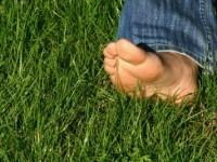 descalzo hierba