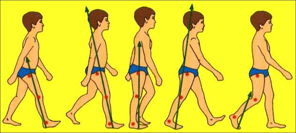 Como andar: el pie